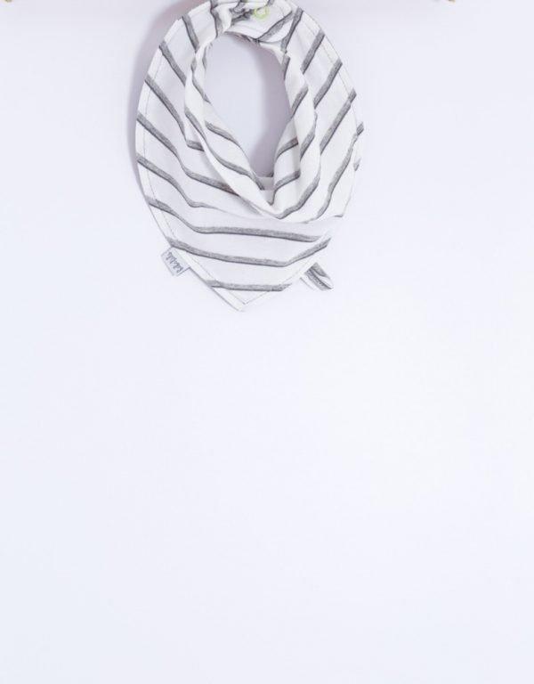 slintáčik bavlnený